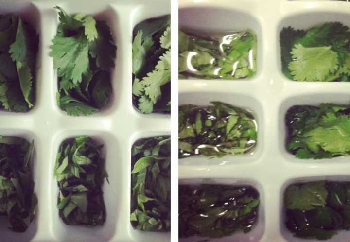 Herb Storage Tips