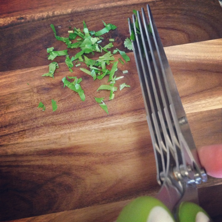 Herb Scissors - Must Have!