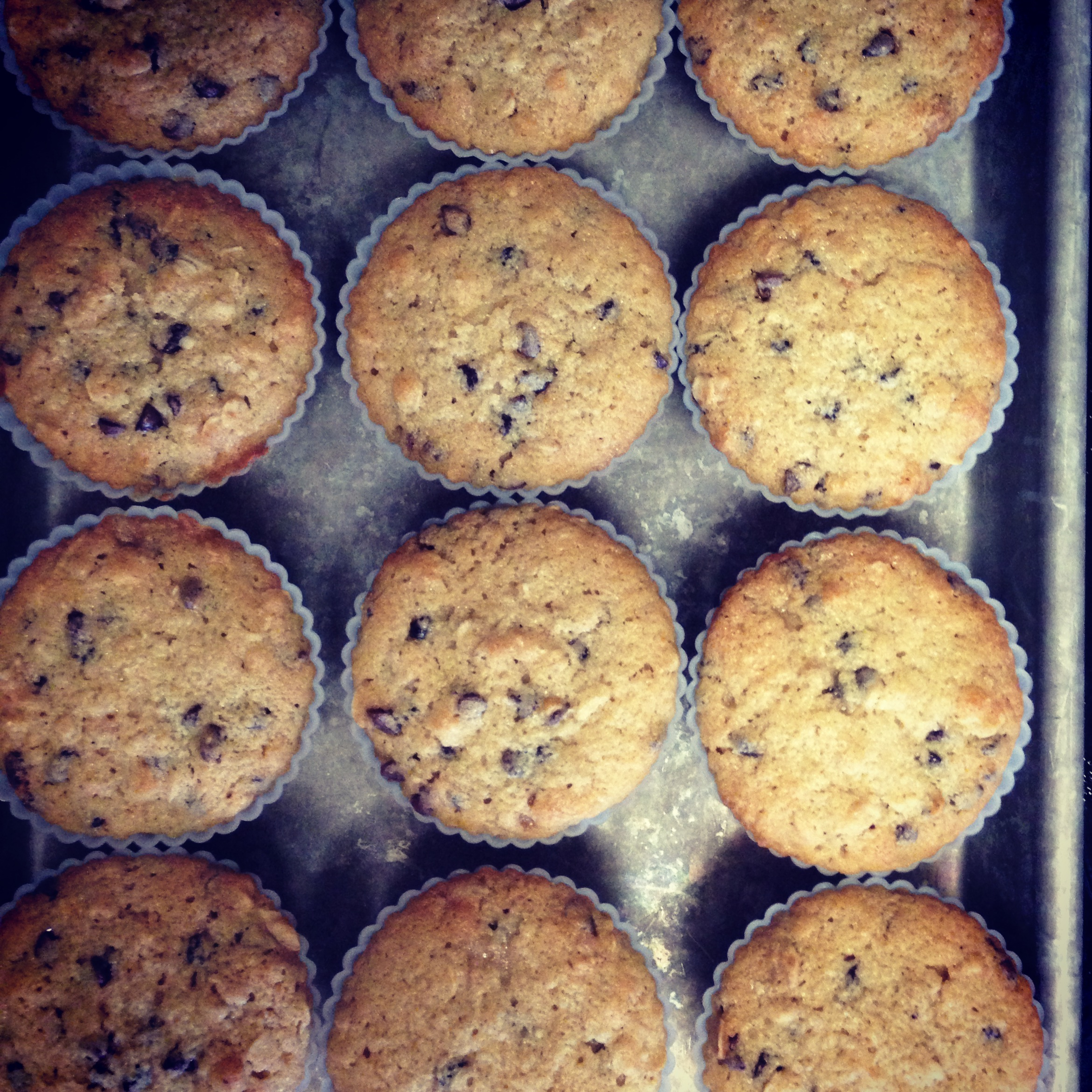 Chocolate Chip Oatmeal Muffins | Hello Homebody