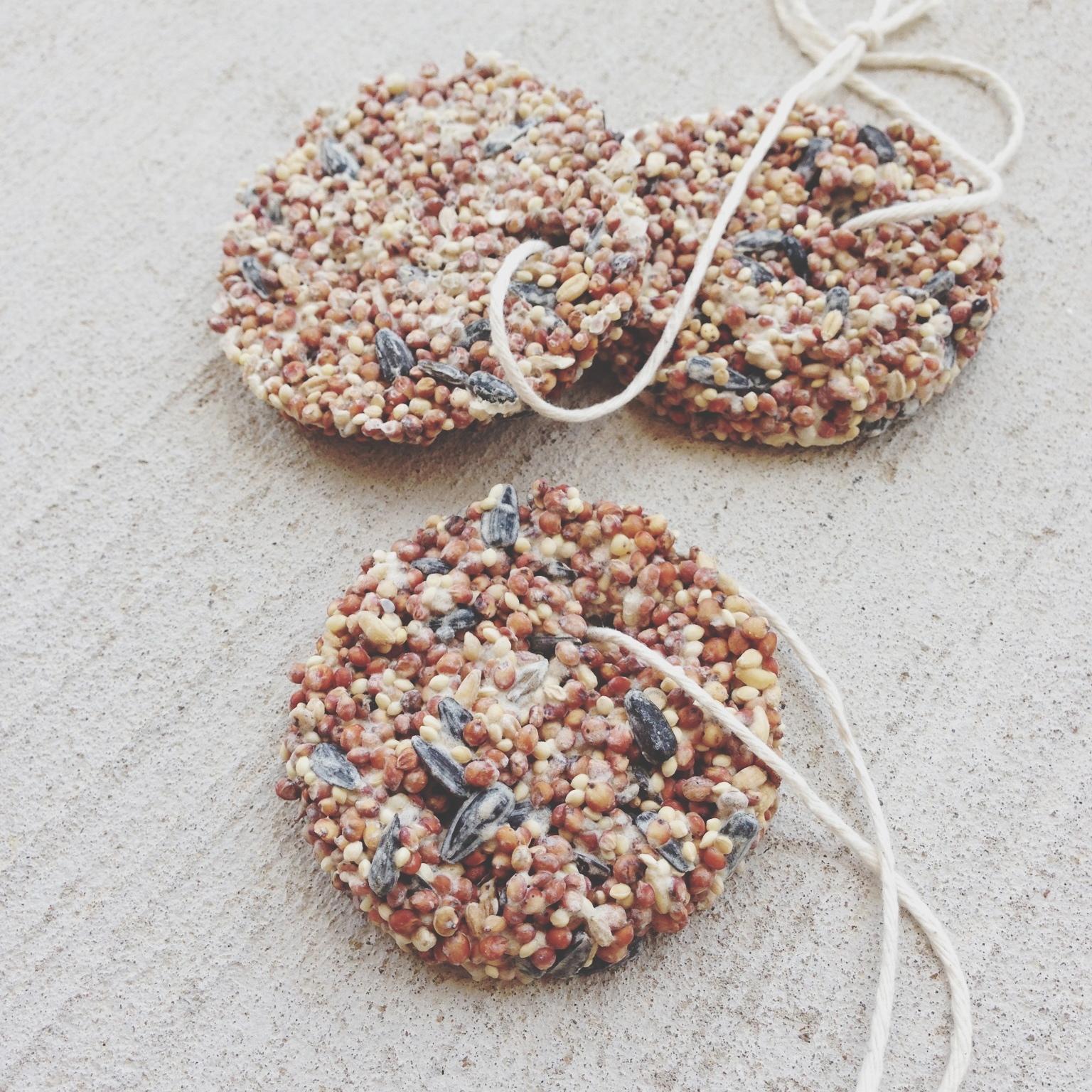 Birdseed bird feeder ornaments for How to make suet balls for bird feeders