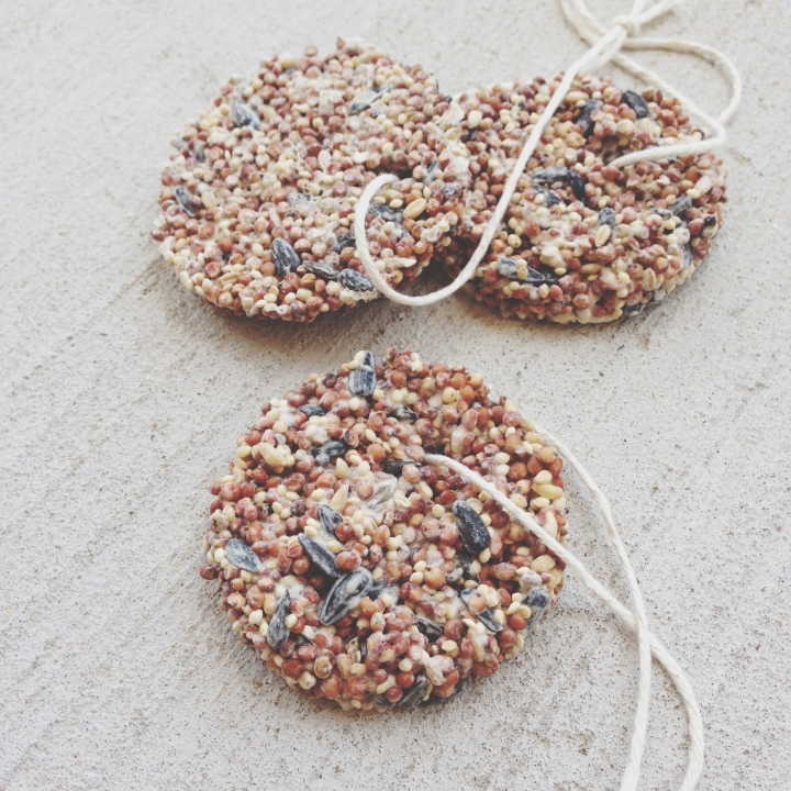 Birdseed Bird Feeder Ornaments