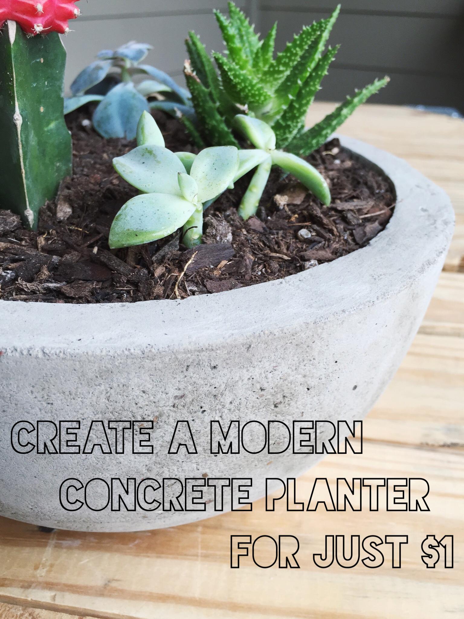 Big Concrete Planters Make A Modern Concrete Bowl Planter