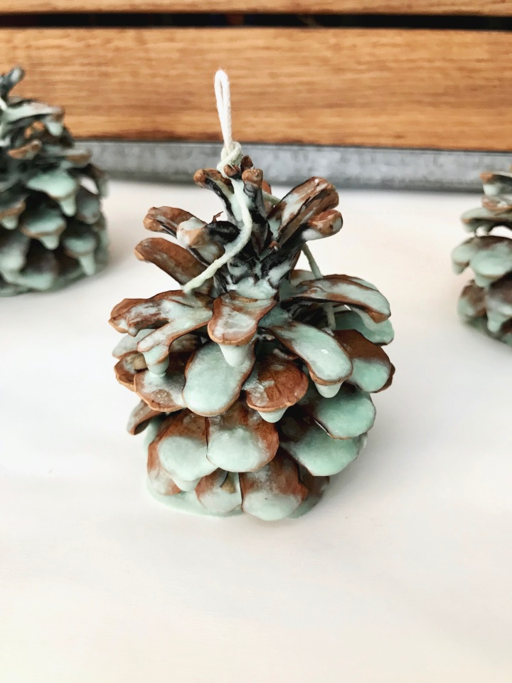 DIY Pinecone Firestarters